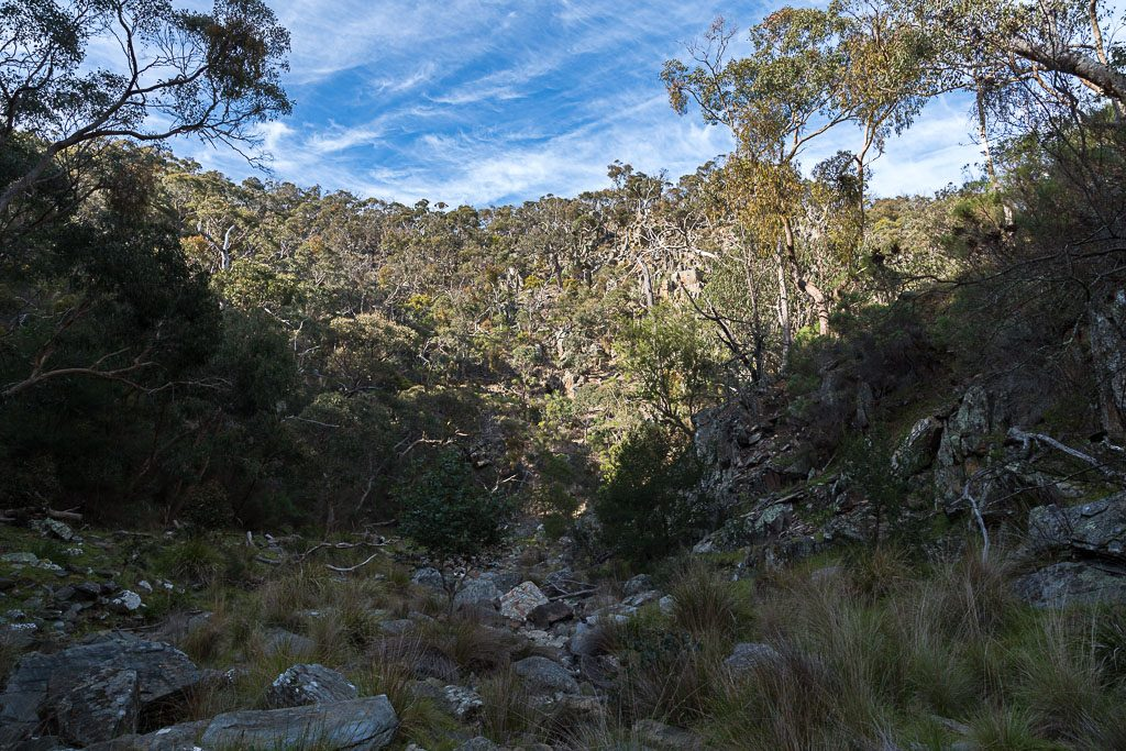 walking-little-river-brisbane-ranges
