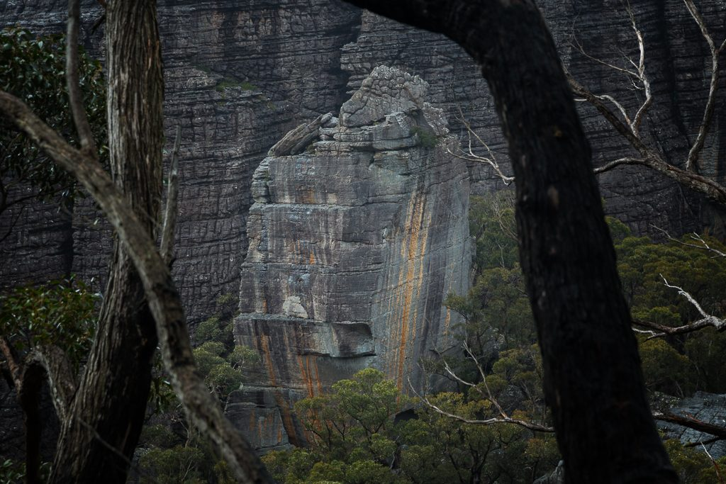 fortress-rock-buttress-through-trees-grampians_