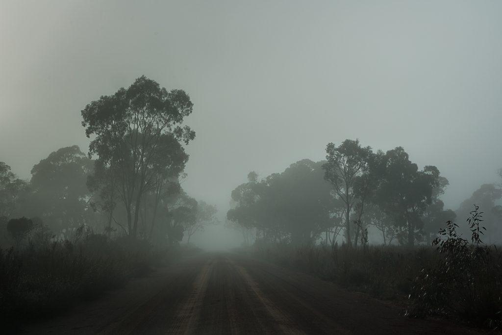 mist-harrop-track-grampians