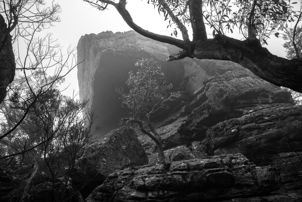 rock-buttress-mist-grampians_