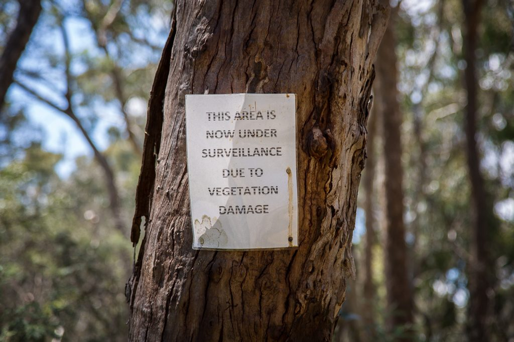 note-on-tree-lancaster-track-upper-loddon-state-forest