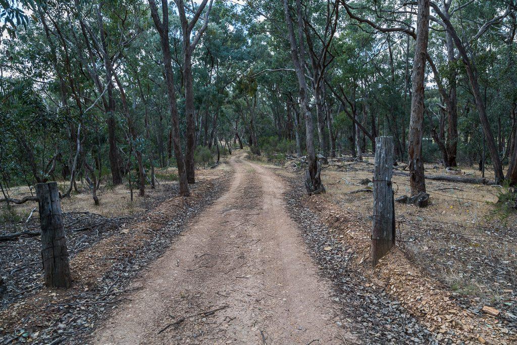 old-gate-lancaster-track-upper-loddon-state-forest