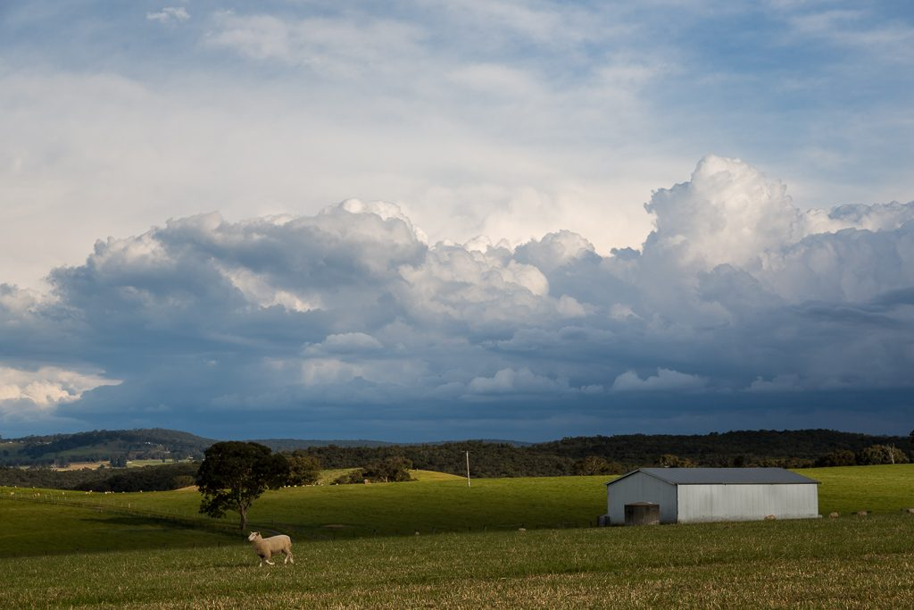 storm-clouds-over-field