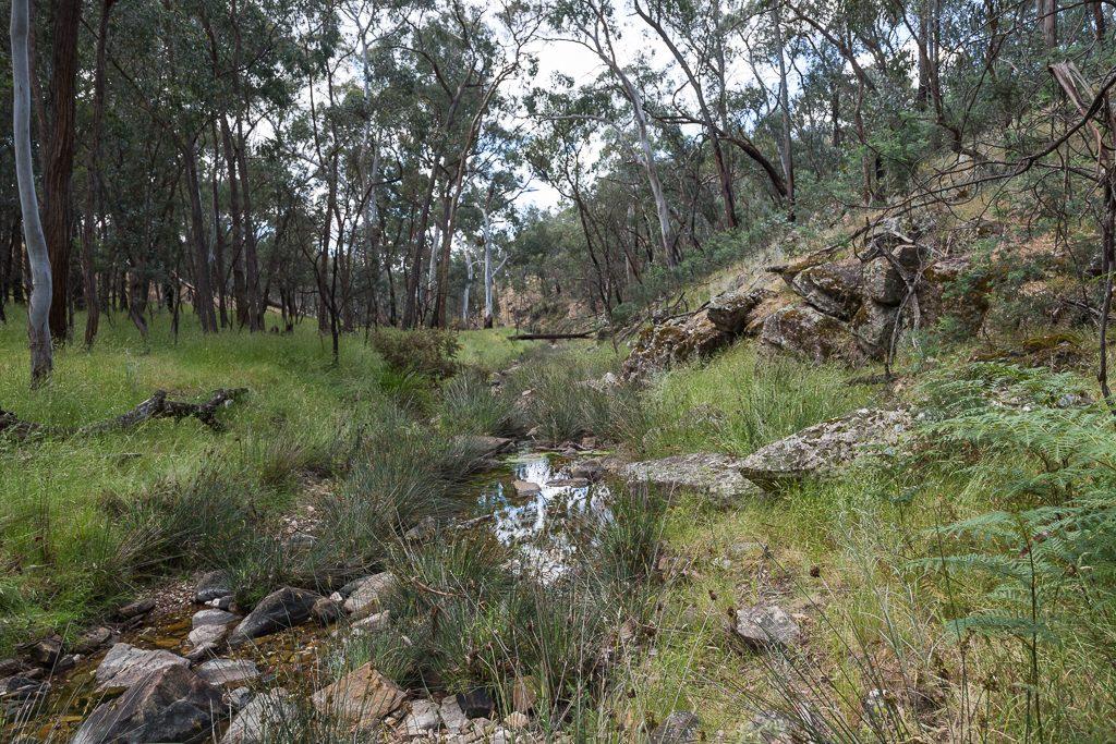 water-tarilta-creek