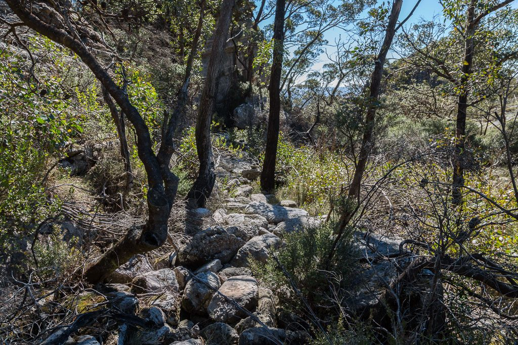 track_below_mount_thackeray_grampians