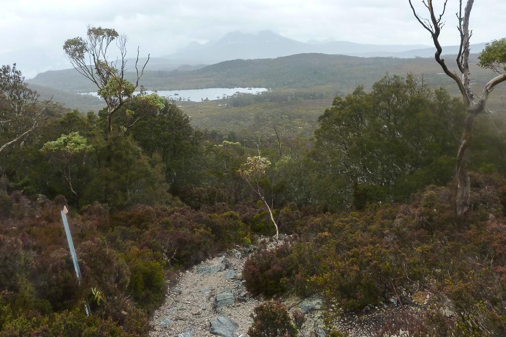 overland-track-near-windermere-tasmania