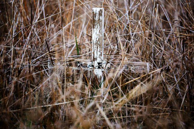 roadside-memorial-long-grass