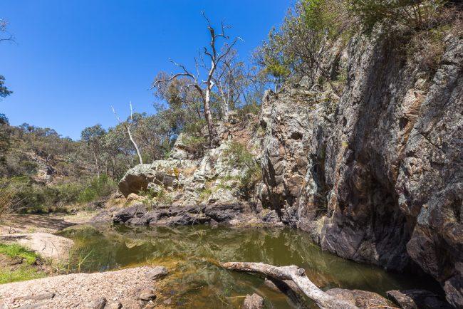 rock-pool-sutherland-creek-steiglitz-historic-park